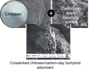 Spent bleaching sorbent and chitosan: mesoporous biohybrid adsorbent for effective removal of dyes from contaminated water
